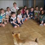 Kita Herz Jesu Besuch der Waldschule 2017